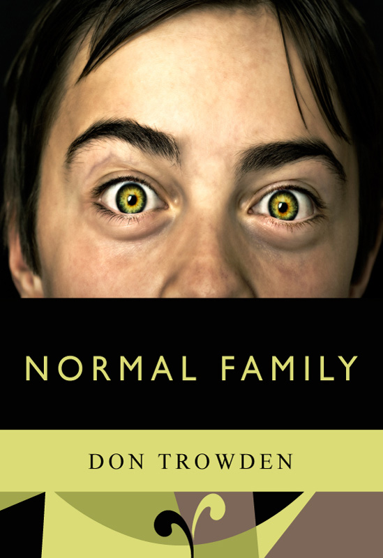 This image is the cover for the book Normal Family